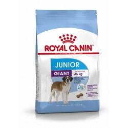 Royal Canin - Giant Junior - Croquettes chien - 15 kg
