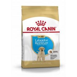 Royal Canin - Labrador Retriever Junior - Croquettes chiot - 12 kg