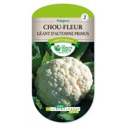 Chou-Fleur Gt D'Automne Primus - 1.5g