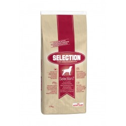 Royal Canin Selection 7 - Croquettes chien - 15 kg