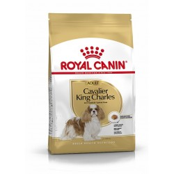 Royal Canin Cavalier King Charles Adult - Croquettes chien - 3 kg