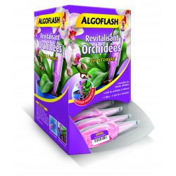 Distributeur monodose revitalisante orchidées - 30ml  40 doses